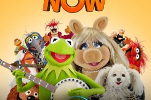 Ecco i Muppets